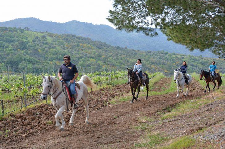 escursione-cavallo-madonie-cefalu-featured